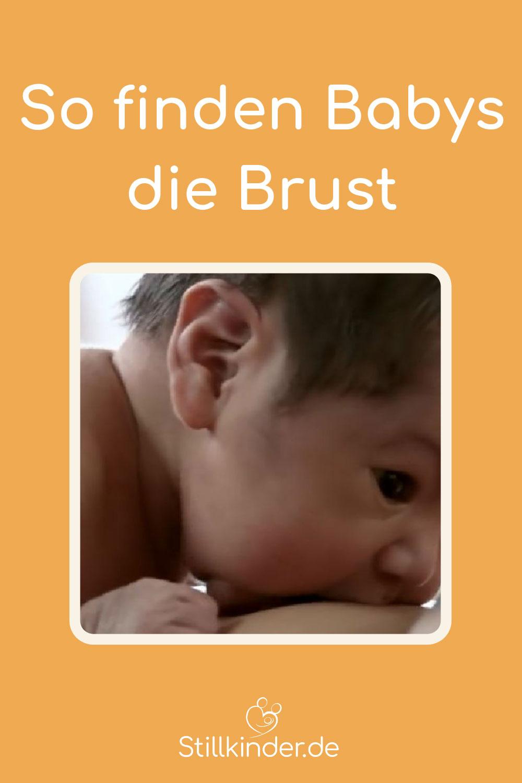 Ein Neugeborenes hat die Brust gefunden