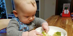 Leitlinien für eine baby-gesteuerte Beikosteinführung