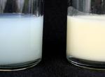 Muttermilch enthält lebende Zellen